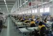 IGB Automotive gradi fabriku u Inđiji