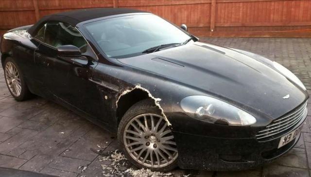 Pas pojeo skoro celo krilo na Aston Martinu