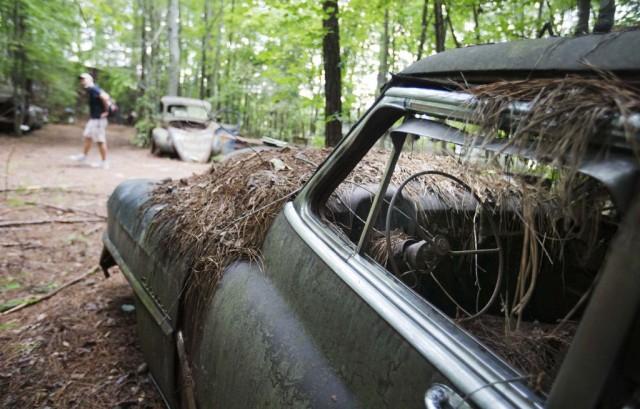 2-Lewis-groblje-automobila-5
