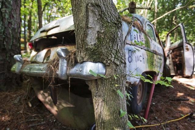 2-Lewis-groblje-automobila